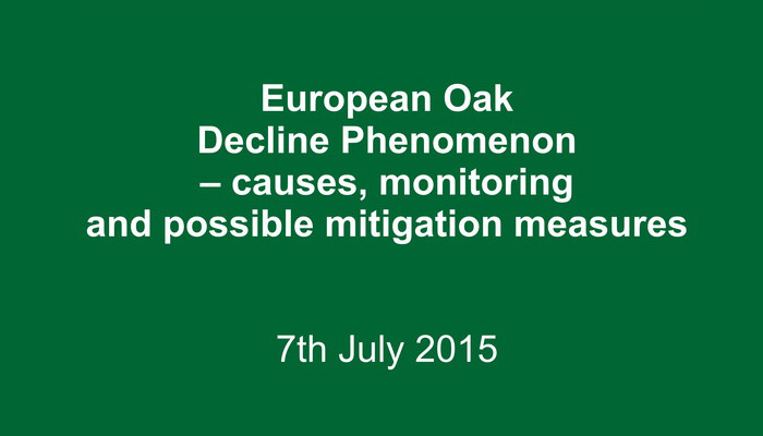European-Oak-Decline-Phenomenon