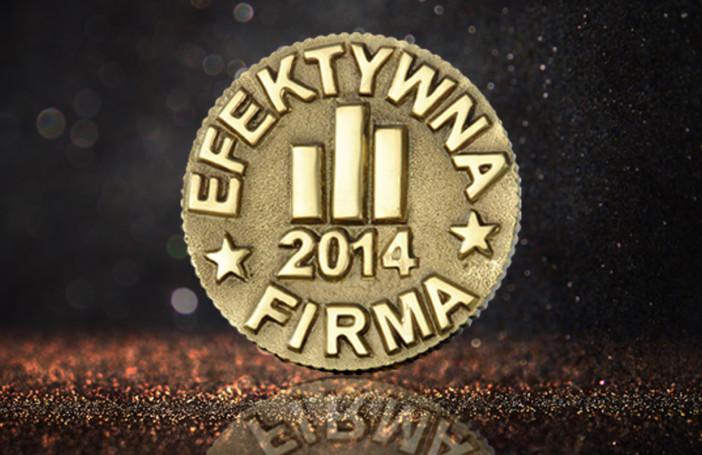 efektywna-firma-2014