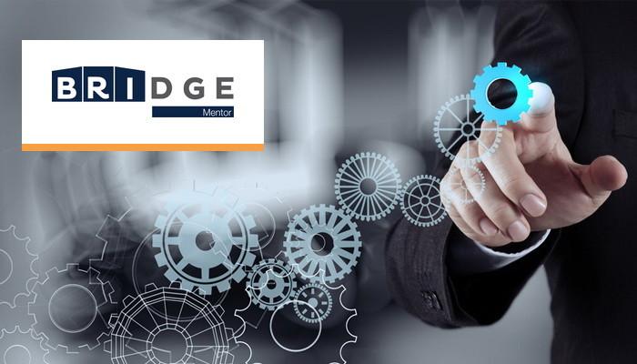 Program Bridge Mentor